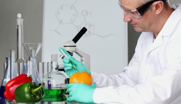 II Simpósio Nacional Microbiologia Alimentar